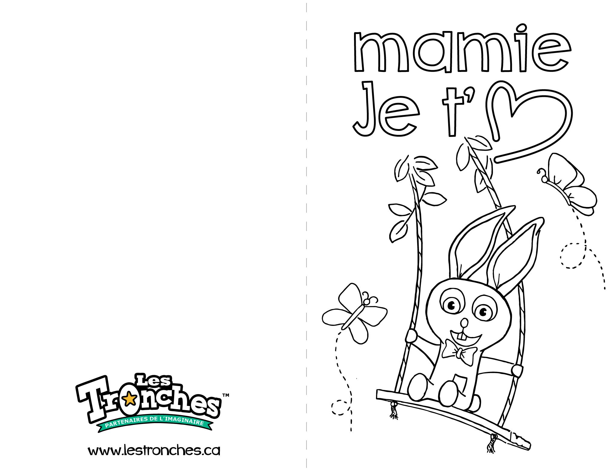 Carte Fetes Des Meres Lapin Pour Mamie Souris Verte